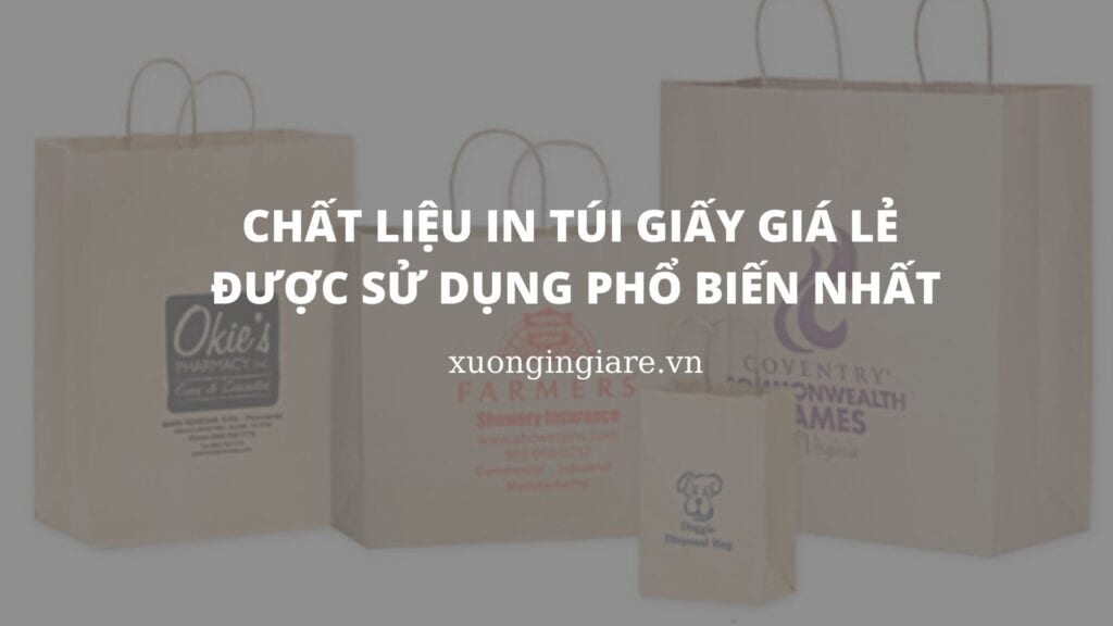chat-lieu-in-tui-giay-gia-le-duoc-su-dung-pho-bien-nhat