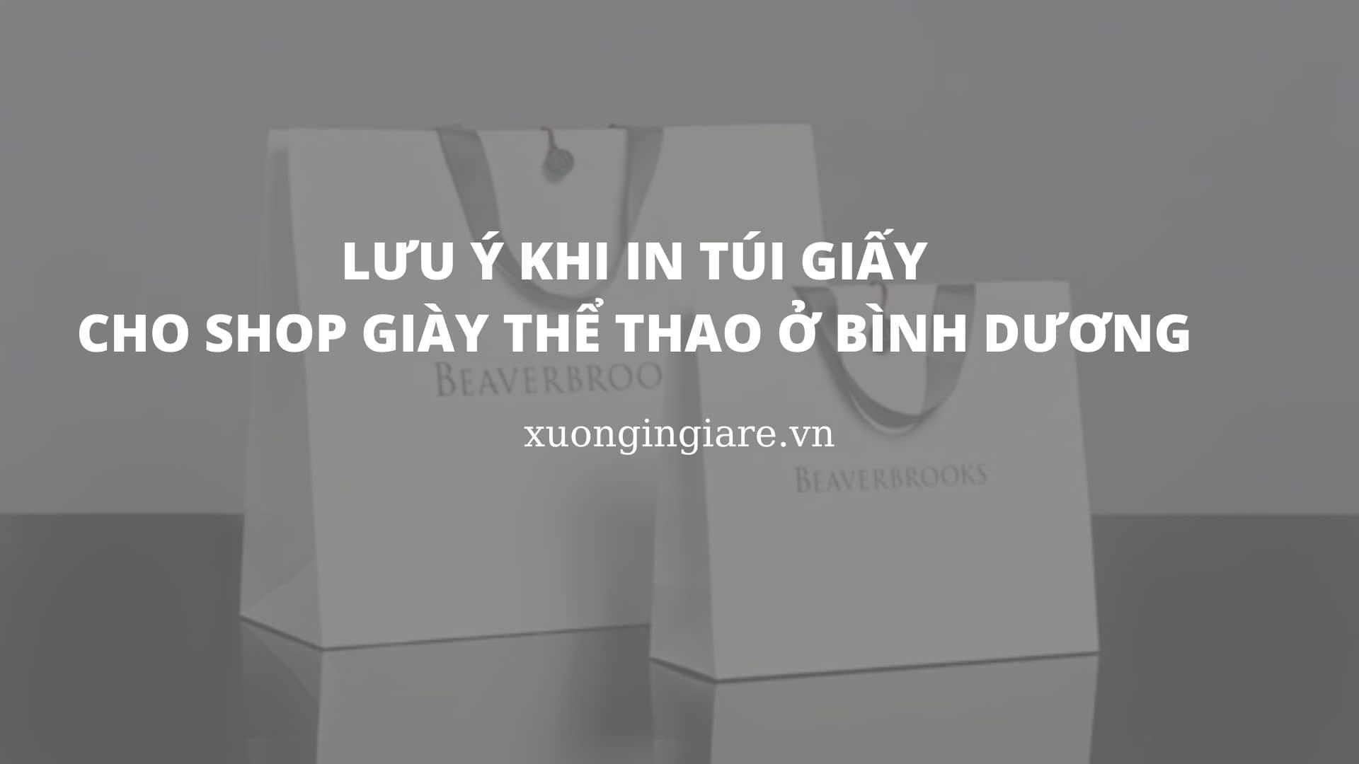 luu-y-khi-in-tui-giay-cho-shop-giay-the-thao-o-binh-duong