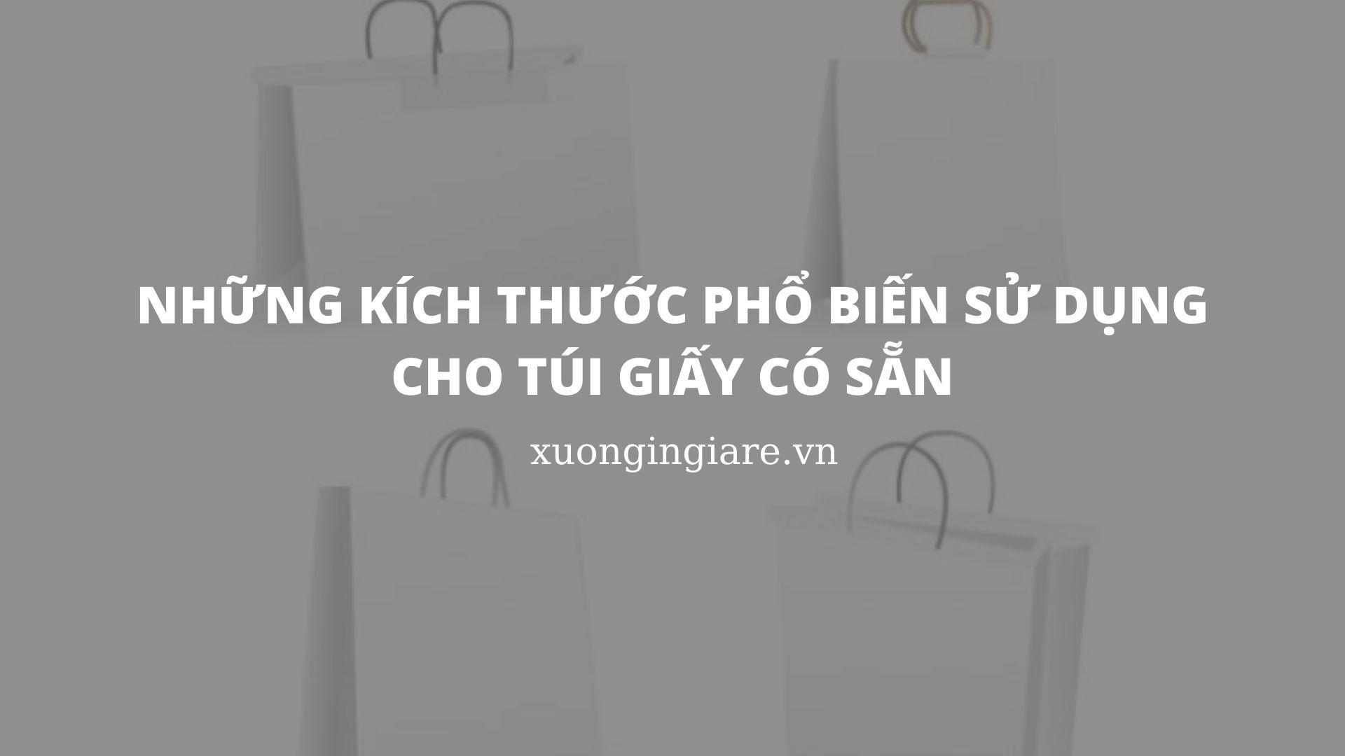 nhung-kich-thuoc-pho-bien-su-dung-cho-tui-giay-co-san