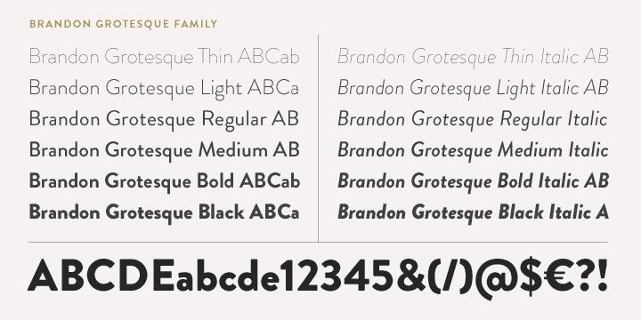 Font in hộp cứng - Các Font thịnh hành cho tên thương hiệu trên hộp cứng