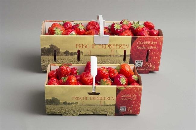 Hộp giấy trái cây - Trợ thủ bảo vệ sự tươi ngon ,chất lượng