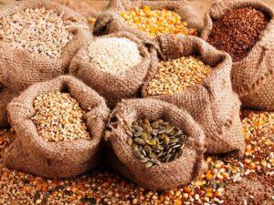 Túi giấy hạt giống - Câu chuyện cần thiết dành cho nhà nông